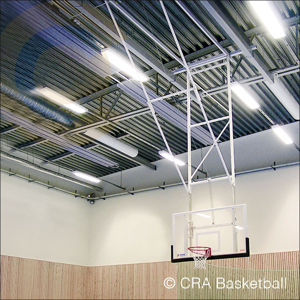 ROOF MOUNTED FOLDING BASKETBALL GOAL SYSTEM